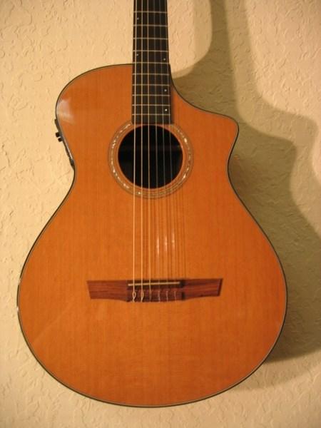 Breedlove N25 E Nylon Classical Guitars Synergy Guitar